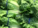 CDC Says Romaine Lettuce Safe To Eat Again