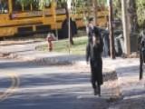 Community In Conflict: Hasidic Jews & Backlash