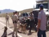 Dramatic New Video Of Confrontation Between Feds, Ranchers
