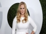 Did Amy Schumer Go Too Far With Fan?