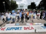 DACA Too Complex For Congress To Address?