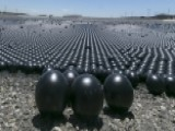 Experts Warn Black Shade Balls Are Potential Disaster