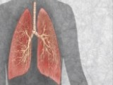First Human Lung Grown In Lab