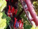 Fallen Tree Branch Halts Rollercoaster Ride