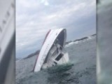 Five Dead After Whale Watching Boat Sinks Off Canadian Coast