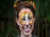 Florida's 'tiger Whisperer' Mauled To Death While On The Job