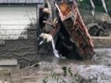 Frantic Hunt For Survivors In Deadly California Mudslides
