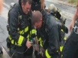 Firefighters Revive Kitten Rescued From House Fire
