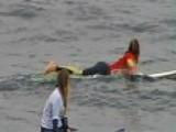 Great White Shark Attack Off Australian Coast