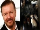 Gervais Slams China Dog-eating Festival