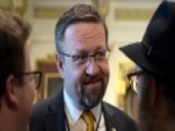 Gorka Mocks CNN Ratings