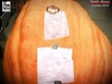 Giant Pumpkin Breaks Record At Missouri Festival