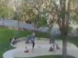 Huge Tree Crashes Down On Children Playing At Park