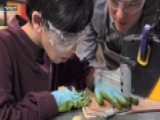 How Dept Of Education Can Improve Science Education