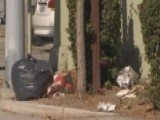 Homeless Offered Jobs Cleaning The Streets Of San Jose