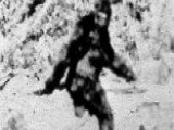Hunter Thought He Was Firing At Bigfoot, 'victim' Tells Police