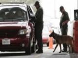 Illegal Immigrant Drug Smuggler Suing For Patrol Dog Attack