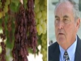Implications Of Supreme Court Legal Battle Over Raisins