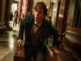 Is 'Fantastic Beasts' Better Than Harry Potter?