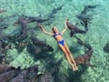 Instagram Model Bitten By Shark While Vacationing In Bahamas