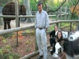 Jack Hanna's Animals In Honor Of The Election