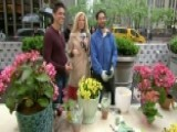 Janice Dean Gets New Flowers On The Plaza
