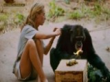 Jane Goodall Was Hesitant To Take Part In New Documentary
