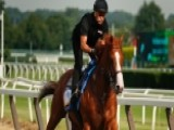 Justify Tries For Triple Crown At Belmont Stakes