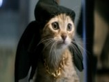 Key And Peele Fight For Feline Friend In 'Keanu'