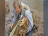 Kentucky Man Rescues Dog Trapped On A River Bank