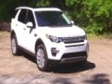 Littlest Land Rover A Social Climber?