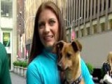 Misty May-Treanor Fights Animal Obesity