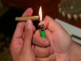 Marijuana Legalization, Same-sex Marriage Win Big