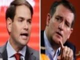 Marco Rubio Takes A Swipe At Ted Cruz As Feud Heats Up