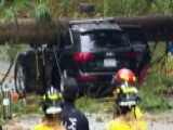 Miraculous Escape After Massive Tree Crushes SUV