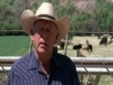 Nevada Rancher Vs Government Agents