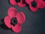 National Poppy Day Honors Veterans, Servicemembers