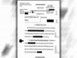 New Reaction To Release Of FISA Documents On Carter Page