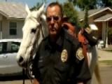 Officer On Horseback Makes DUI Arrest In California