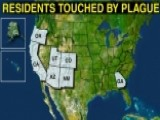 Plague Cases On The Rise Across US