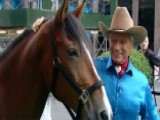 Real-life Horse Whisperer Gentled More Than 50,000 Horses