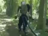 Robot's Walk In The Woods Creepy Or Cool?