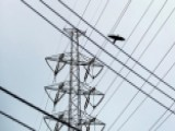 Report: National Grid In 'imminent Danger' From Cyberattack