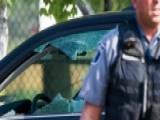 Rod Wheeler On 'multi-agency' Probe Into Scalise Shooting