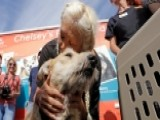 Rescue Crews Work To Reunite Flood Victims With Their Pets