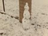 Residents Of Vail, Arizona Enjoy A Rare Snow Storm