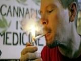 Study: Marijuana Use Linked To Drug Addiction In Offspring