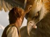 Stars Of 'Fantastic Beasts' Feel Fan Anticipation