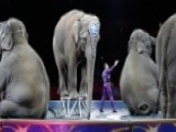 Shillue: Political Correctness Claims The Circus