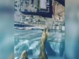 Swimming Over The Edge In Glass Bottom Pool 40+ Floors High